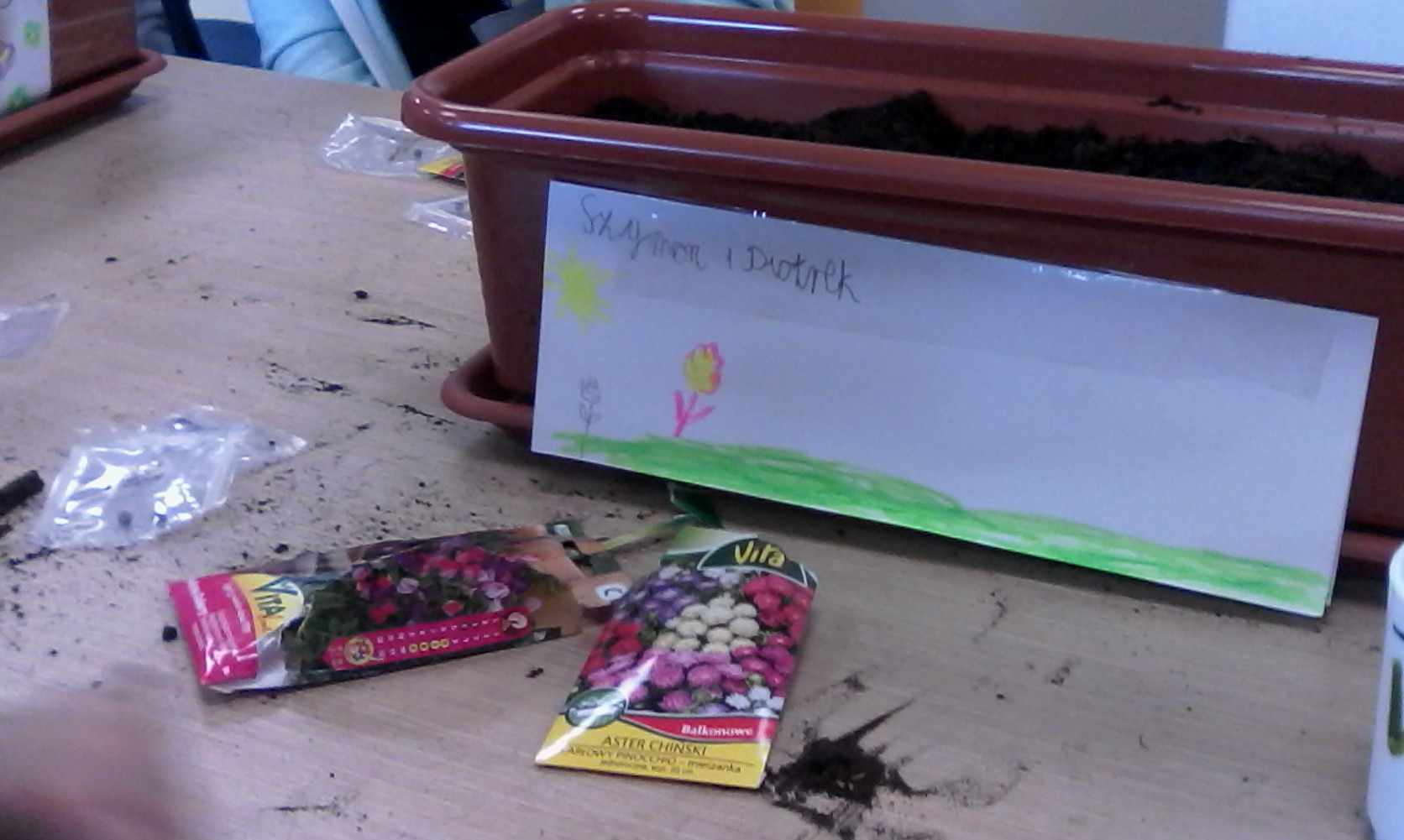 Akcja siania kwiatów w Świetlicy